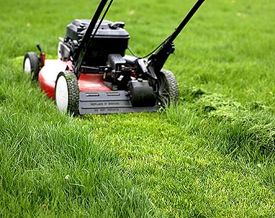 Synthetic Turf Environmentally Friendly