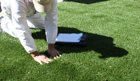 Synthetic Turf Mold and Mildew